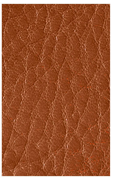 Secrid Leather Veg